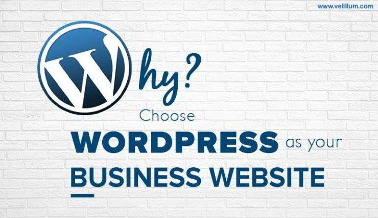Choose WordPress for Business Website