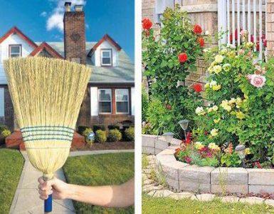Clean Home Garden