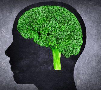 Broccoli to treat Schizoprenia