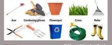 Common Gardening Tools