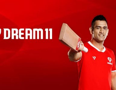 What is Dream 11