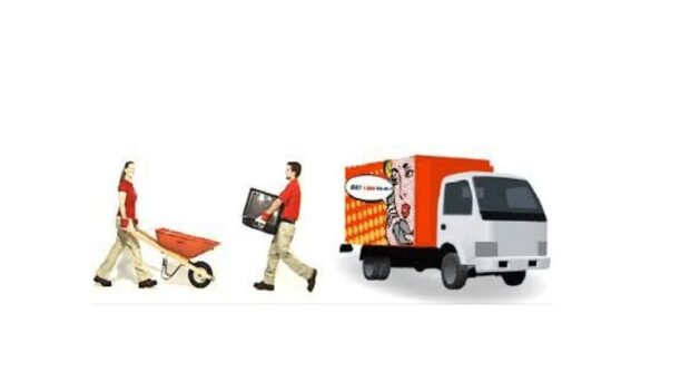 Things to Consider When Choosing Commercial Junk Removal Service