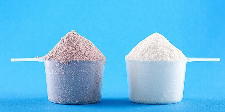 Vegan versus Dairy Protein Powder