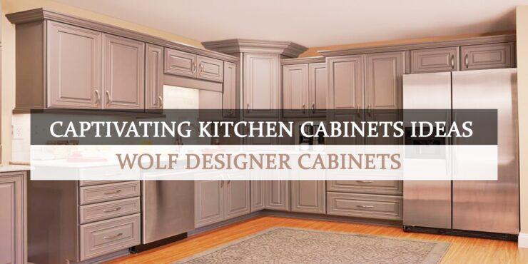 Captivating Kitchen Cabinets Ideas - Wolf Designer Cabinets