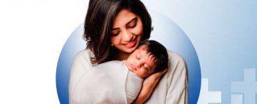 Cryopreservation of Embryos