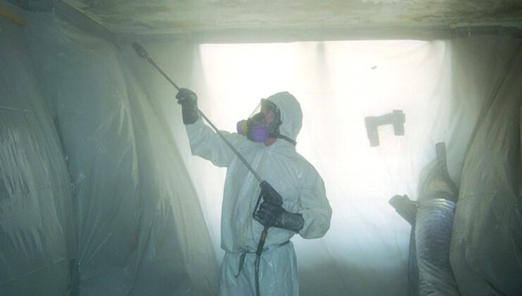 Lead and Asbestos Inspection