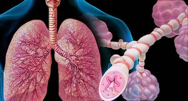 Asthma facts How Asthma Damages Your Mind